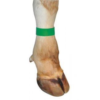 Märkmelint jalale roheline